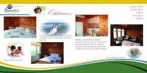3-4 sayfa